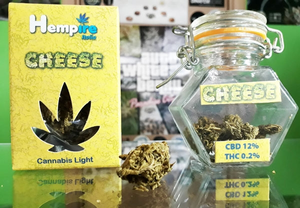 cbd-cheese_pradise-seeds-hempire