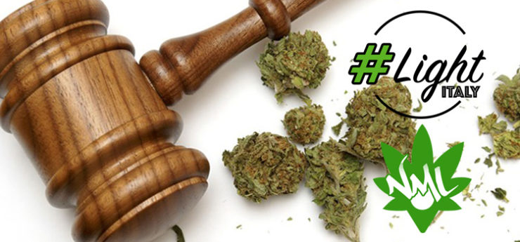 cassazione legge cannabis light