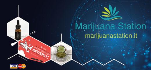 marijuanastation acqisto online