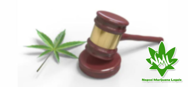 assoluzione commerciante marijuana legale
