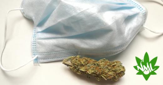 consegna erba legale