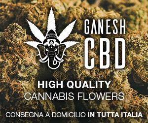 Ganesh cannabis light Shop